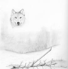Women Wolves