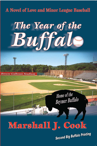 The Year of the Buffalo