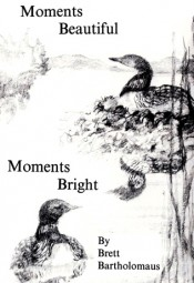 Moments Beautiful Moments Bright